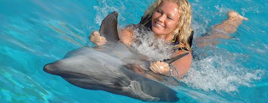 dolphinpark-genel-2.jpg