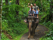 Elephant-Safari-Ride-3.jpg
