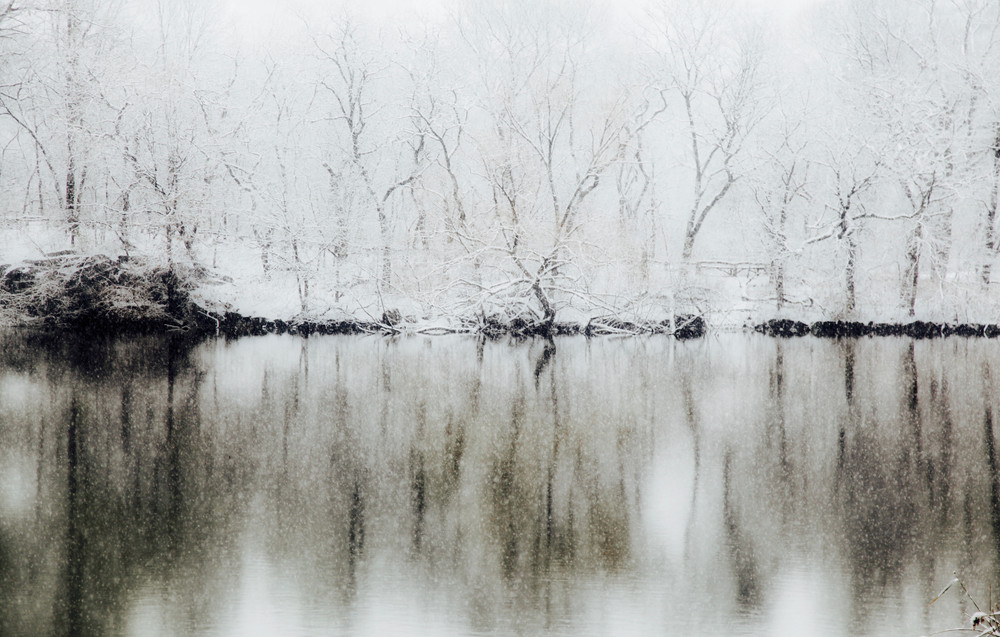 New York #9 - Central Park, Winter