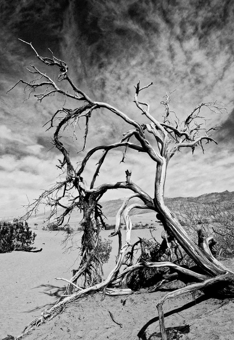 Black & White #10 - Death Valley, CA