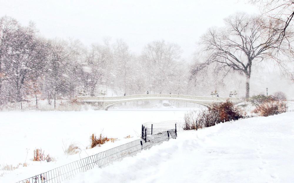 New York #8 - Central Park, Winter