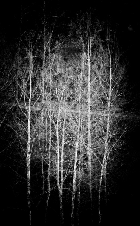 Black & White #9