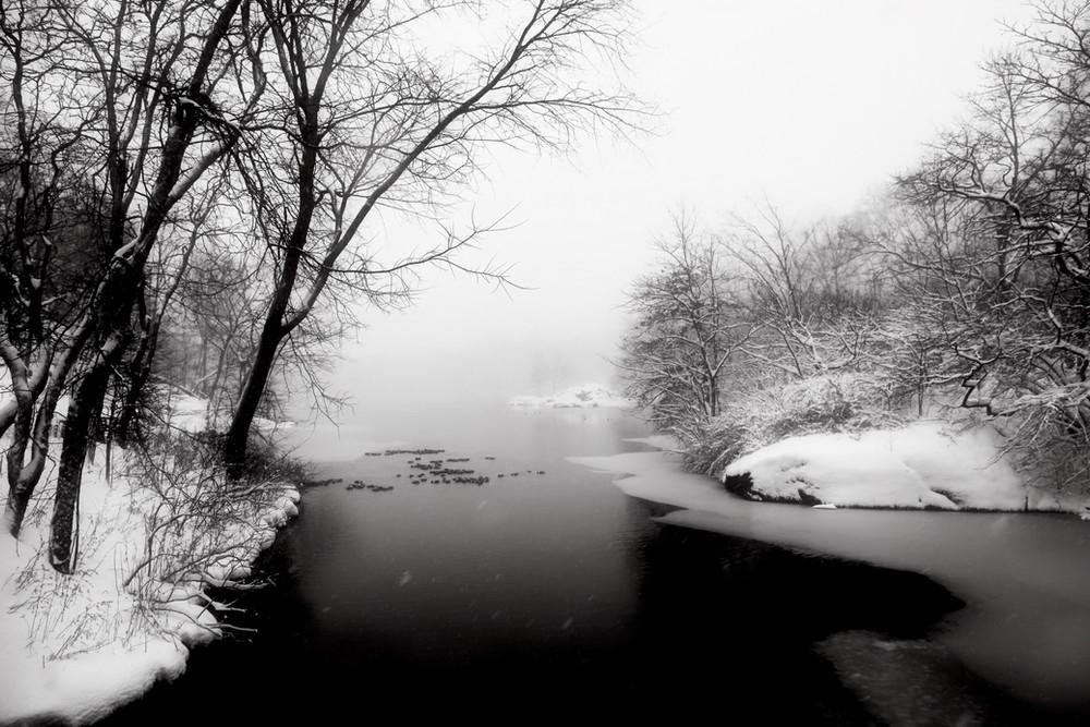 Black & White #12, Central Park, NY