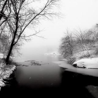 Central Park Winter Black & White 1