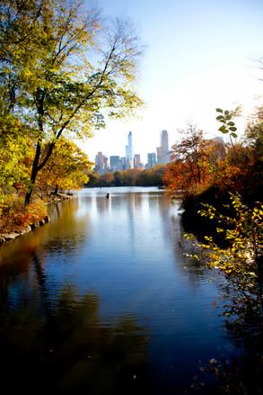 New York #10 - Central Park,  Fall