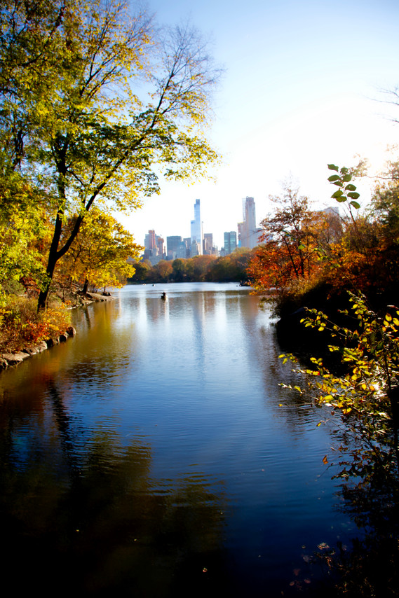 New York #10 - Central Park,  Fall