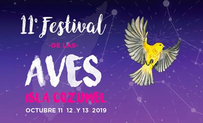 11° Festival de las Aves Isla Cozumel