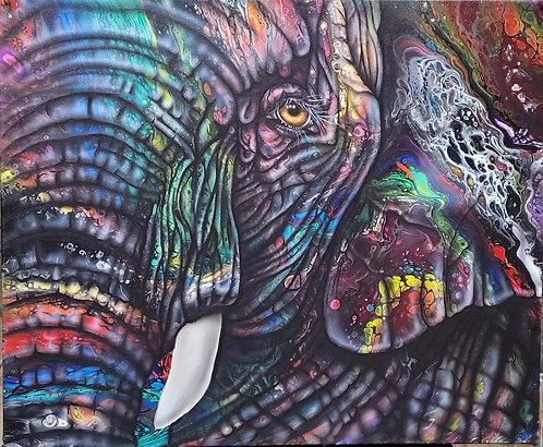 Elephant 11x14 print