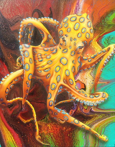 Blue Ringed Octopus original