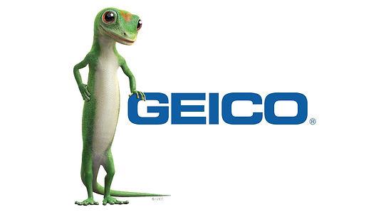 Geico - Hail Medic Paintless Dent Repair