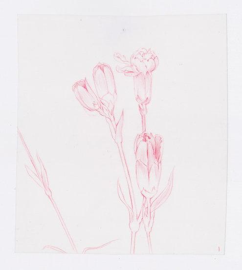 49 Flowers, #1 (2016)