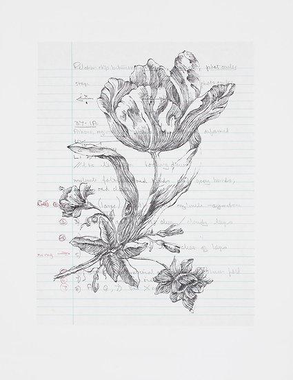 Foliation b (iii) (2019)