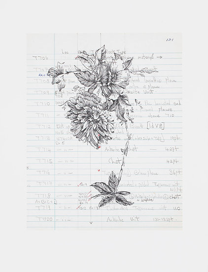 Foliation b (ii) (2019)