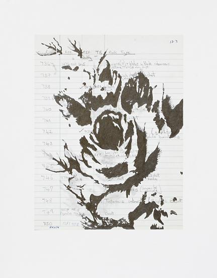Foliation a (iii)  (2019)