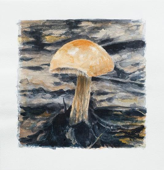 Mushroom No. 15 (2018)