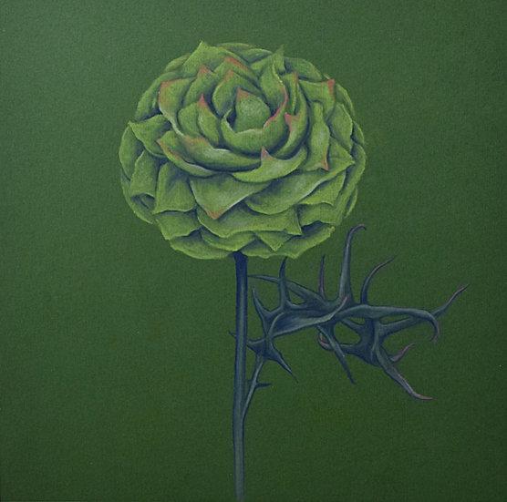Fantasy Flower Series (Cactus, Peony, Thistle)  (2020)