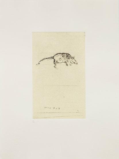 Dead Rat (2014)