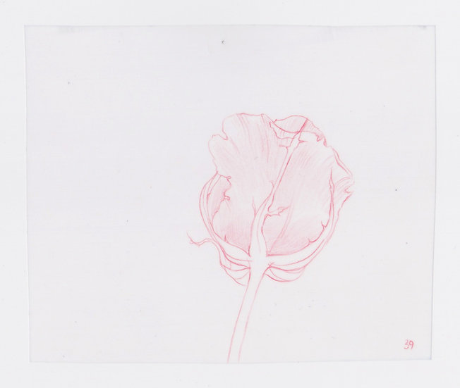 49 Flowers, #39 (2016)