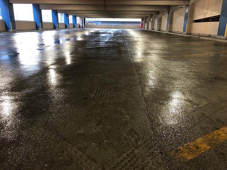 Parking Lot Pandemic 4 (2020/2021)