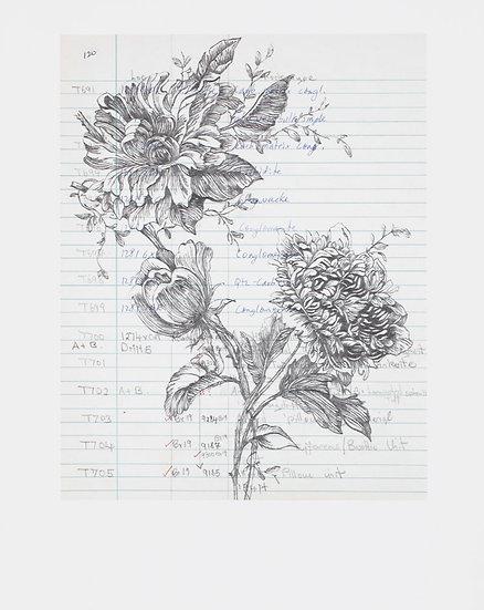 Foliation b (iv) (2019)