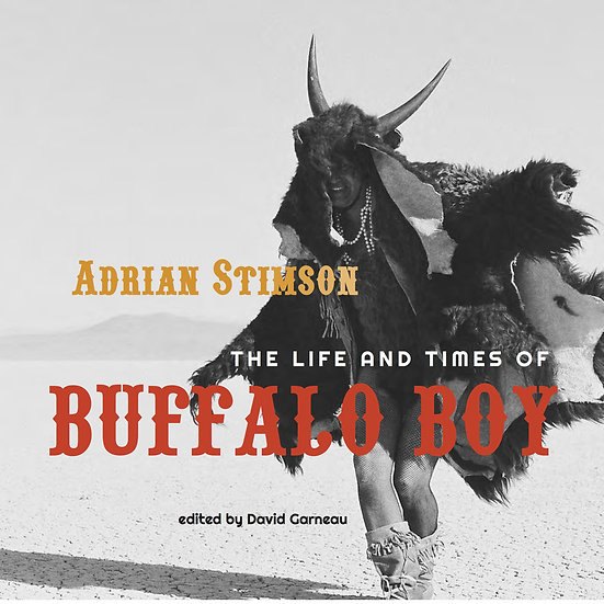 Adrian Stimson: The Life and Times of Buffalo Boy (2015)