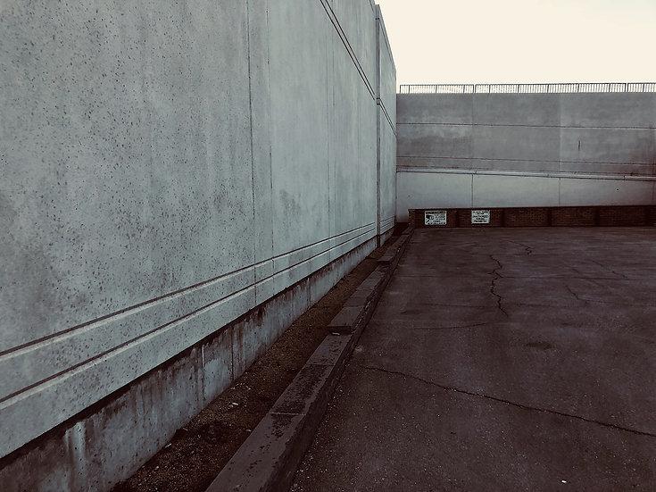 Parking Lot Pandemic 24 (2020/2021)