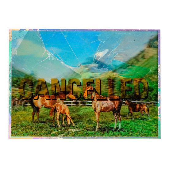 LenticularHorses - Aluminum post card (2020)