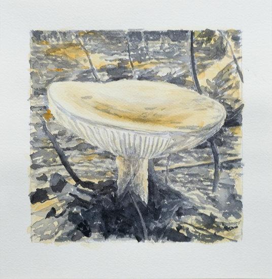 Mushroom No. 21 (2018)