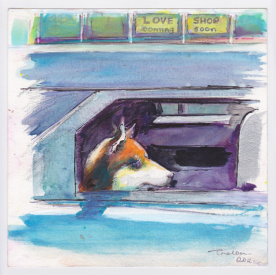 Dog in a car (2021)