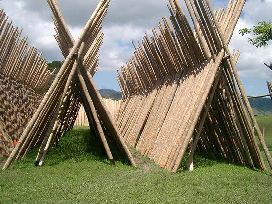 bamboo_poles_drying_2.JPG