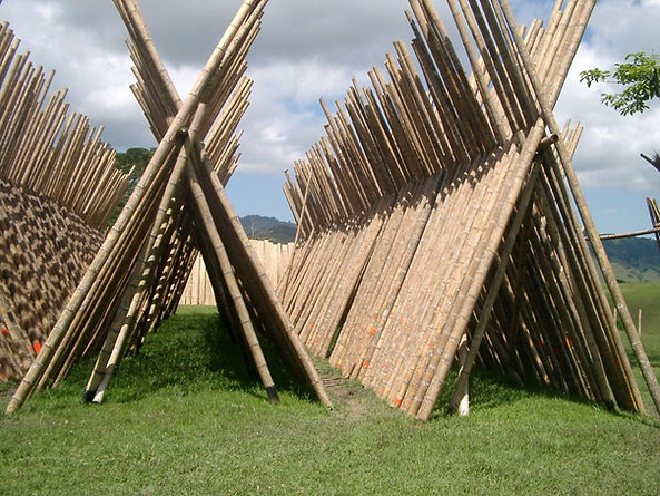 bamboo_poles_drying_2.JPG