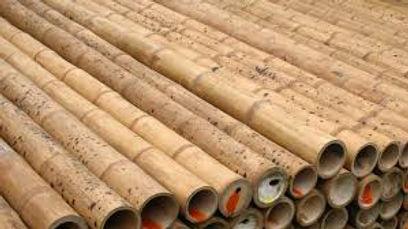 guadua-bamboo-pole-thin-wall-structure.j