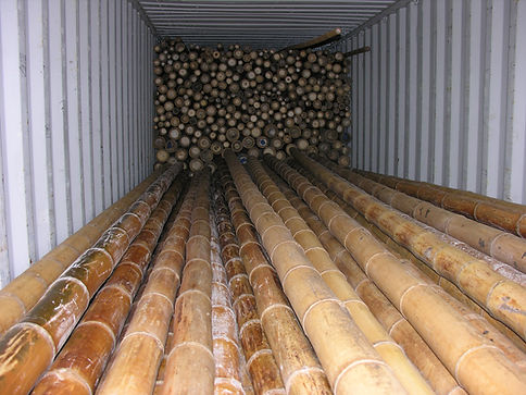 container_bamboo_poles_5.JPG