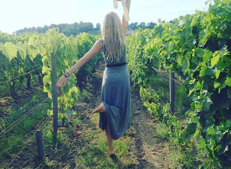 Vines, wine, and family time: How my love for the drink took root