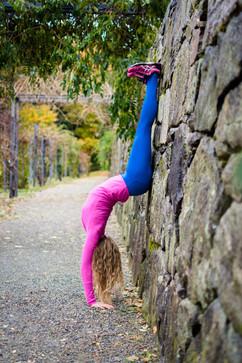 Yoga at the Harvard Arnold Arboretum.
