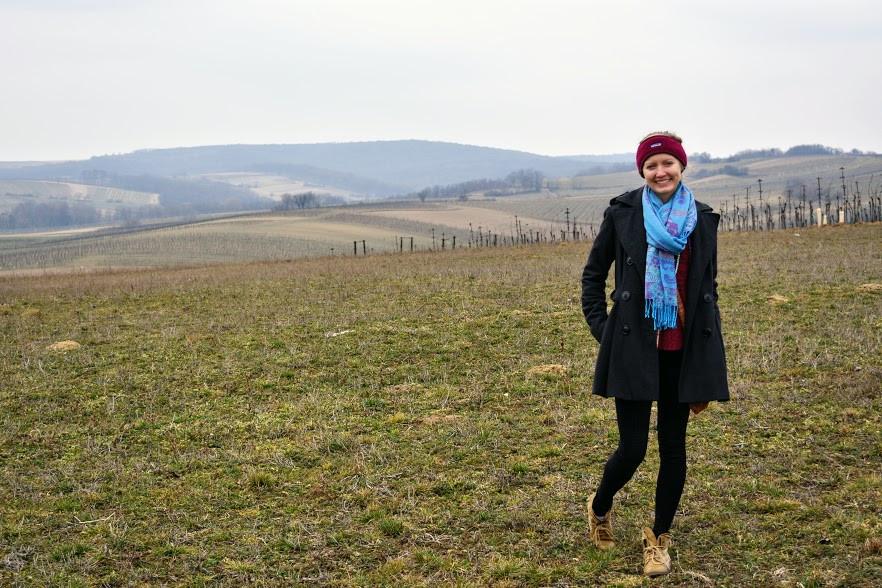 Adventures in Austrian Wine-land