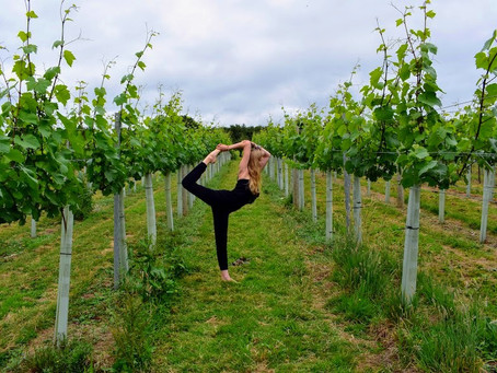 Mindfulness and Moderation: The Ingredients in French Wine Culture