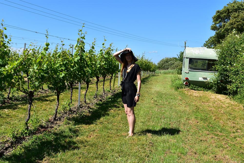 Court Garden Winery