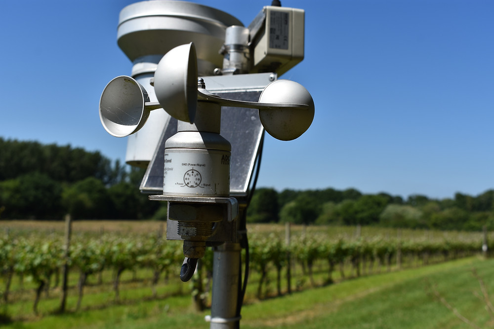 Weather meter in the fields of Court Garden Winery