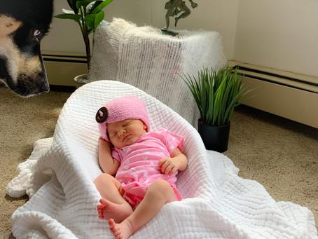 Eira's Birth Story