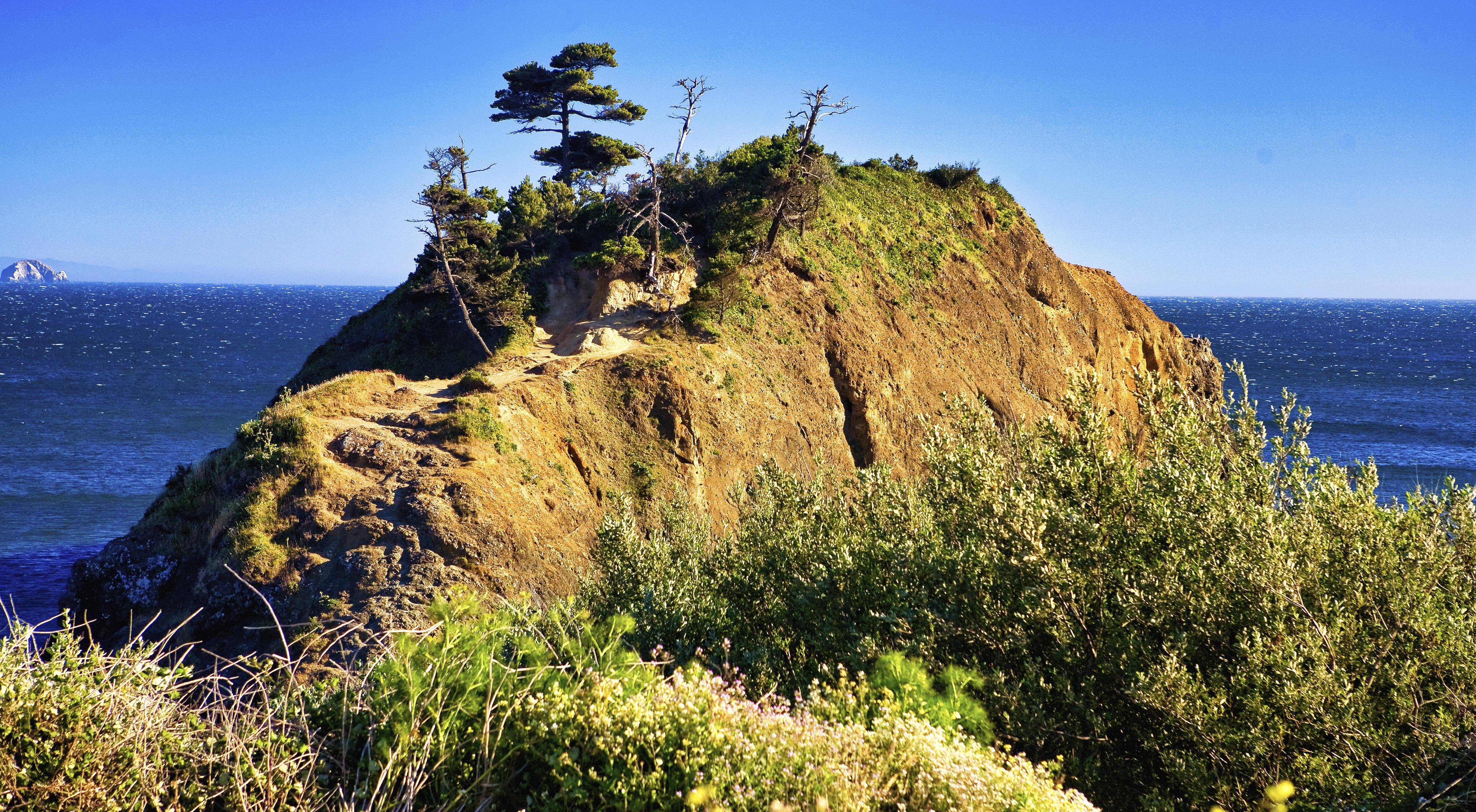 Coast Bump
