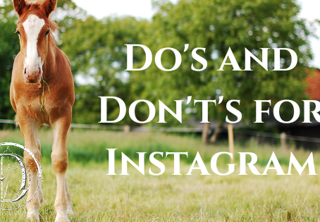 Do's and Don't's for Instagram