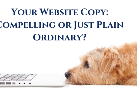 Your Website Copy: Compelling or just plain ordinary?