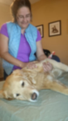 Jolena Kusec, massaging a dog