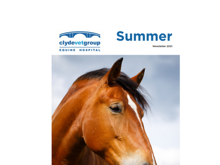 2021 Equine Newsletters