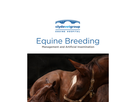Equine Information Packs