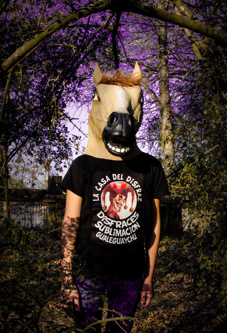 caballo-2-2.JPG