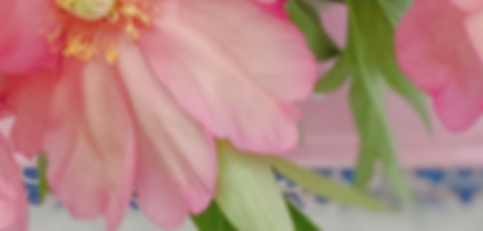 tree peonies and lilacs.JPG