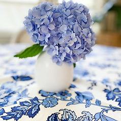 blue hydrangra.jpg