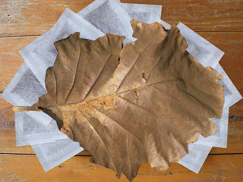 Teak Leaf Heated-Sealed T-Bags